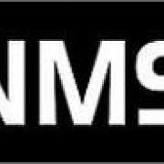 New Millenium Software
