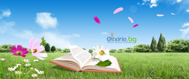 Reading-a-book-on-green-meadow-relaxing-summer-time_2560x1440.jpg