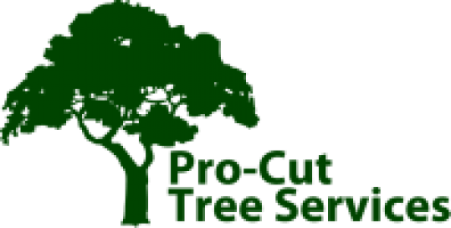pctreeremovalmelbourne.png