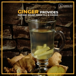 Fight off Flu & Cold with GINGER 2019-02-07