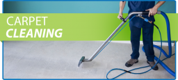 Carpet-Cleaning services.png